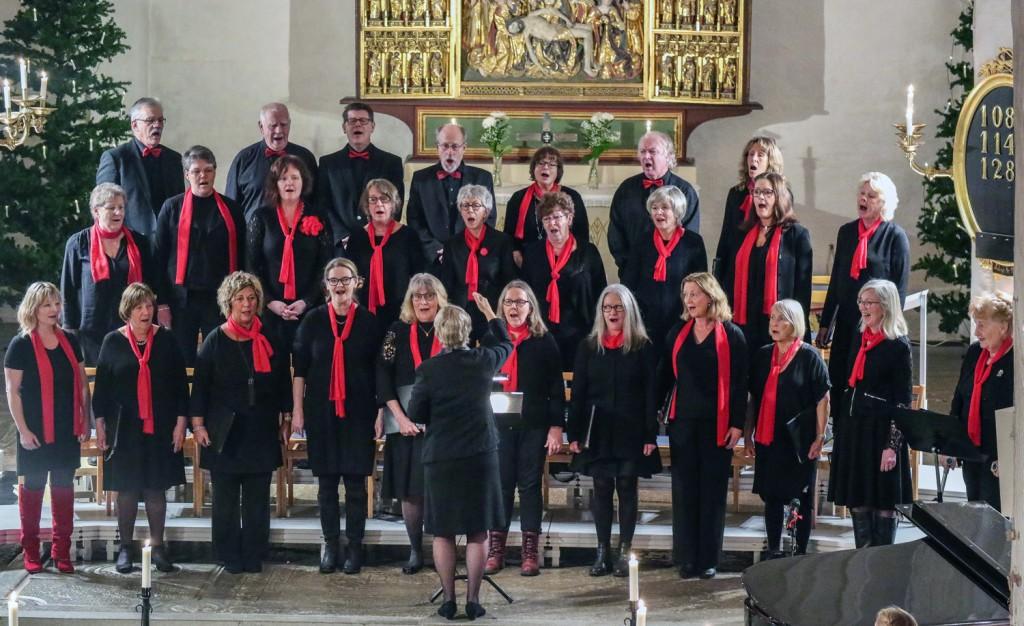 Halsbandet2 i St Laurentii kyrka 2018-01-06 ed